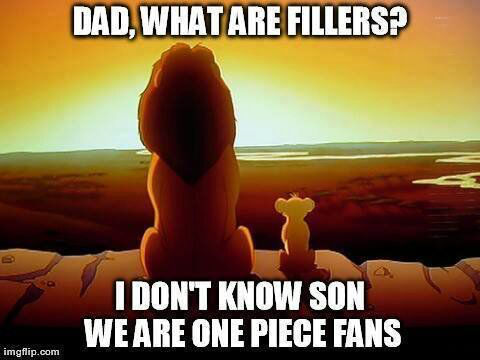 Fillers We are One Piece Fans